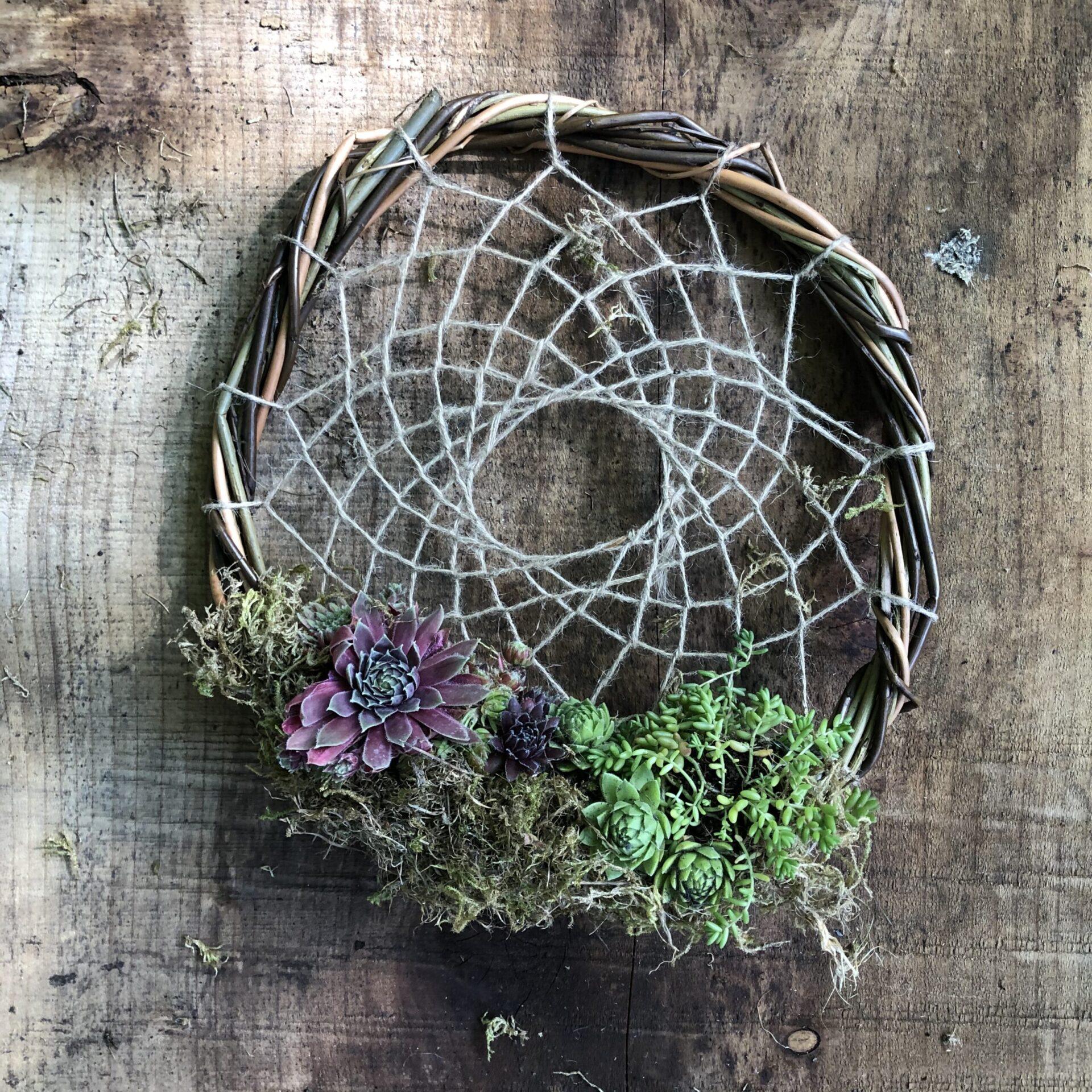 Botanical Dreams Workshop